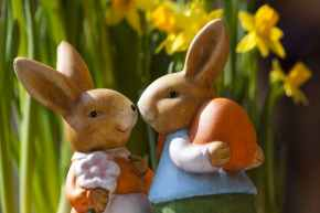 easter-bunny-easter-rabbit-bunny-couple-69816[1]